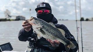 California Delta Bass Fishing 3/23/19