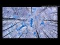 Laila Main Laila (Raees) - DJ SwD MP3 SONGS
