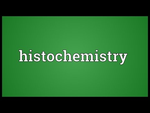 Histochemistry Meaning