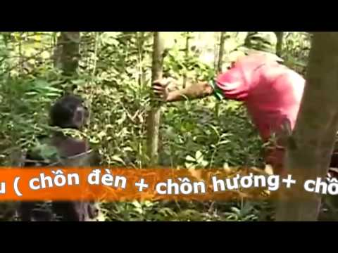 Bay Chon Bang Luoi Hieu Qua Cao