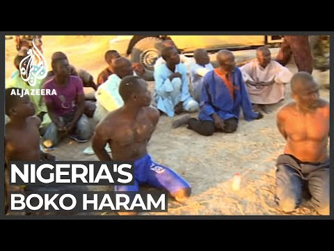 Regional forces gain ground against Nigeria's Boko Haram