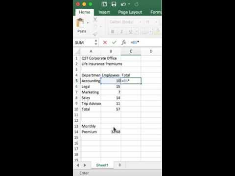 Excel Unit C Skills Review Insurance Premium