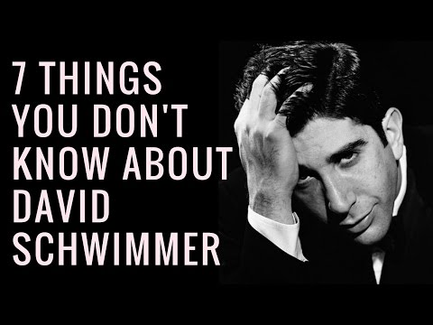 David Schwimmer Facts  Interesting Facts About David Schwimmer