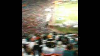 Miami Dolphin Game - My birthday weekend