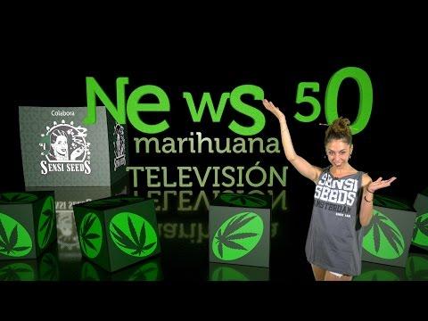 Marihuana Television News #50 - Especial 50 programas contigo ¡¡GRACIAS!!