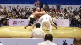 Чемпионат Мира по сумо (Sokolovskiy 🇺🇦🇷🇺)
