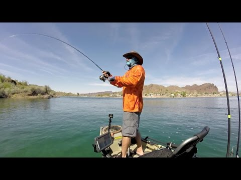 Colorado River / Parker Strip Kayak Bass Fishing - Day 4