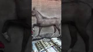 Ковер лошадь. 120.000$ и 4 года работы