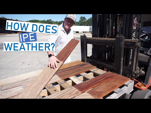 Ipe Decking: Tracking Sunlight Exposure