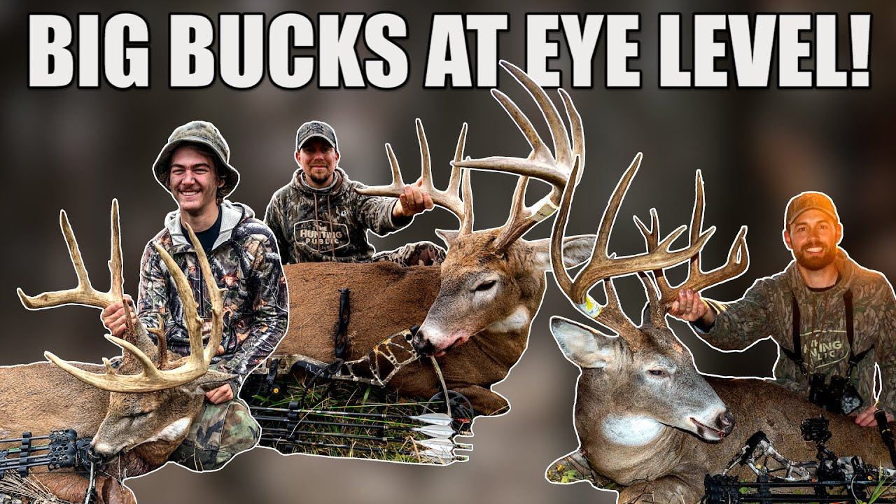TOP 5 BUCKS From the GROUND! - Bowhunting Public Land Whitetails