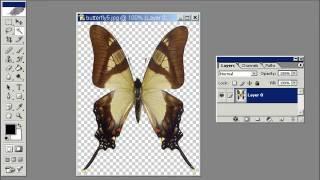 Изображения в формате jpg и прозрачность  Урок 55