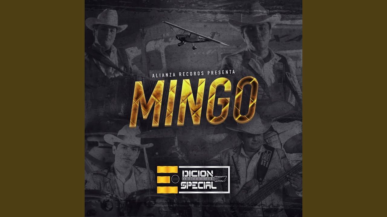 Download Mingo