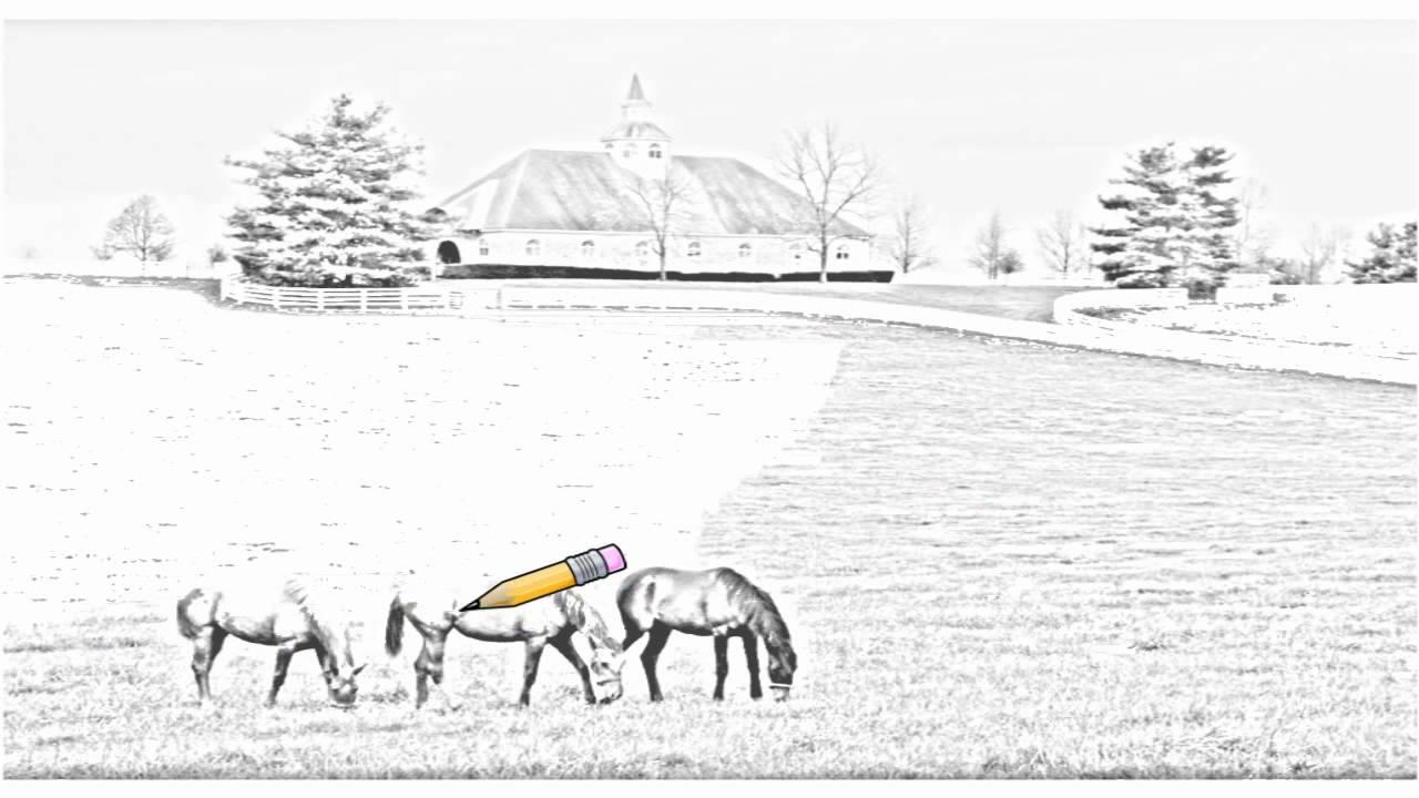 Auto Draw 2: Donamire Horse Farm, Near Lexington, Kentucky Auto Draw 2: How  To Shade A