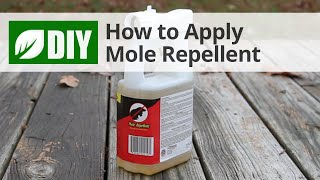 How to Apply Mole Repellent