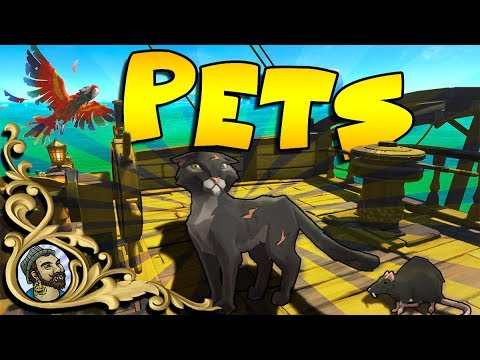 Sea Of Thieves Pets Update Cats Monkeys Parrots And Megalodon Youtube