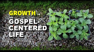 Growth In The Gospel-Centered Life (Msg 1)