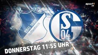 ReLIVE 🔴 | 1899 Hoffenheim - FC Schalke 04 | U19 Bundesliga | Halbfinale | SPORT1