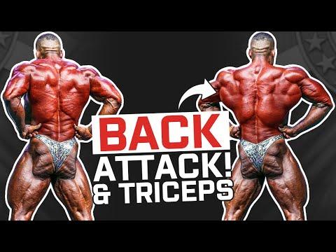 Back & Triceps | Lorenzo Leeuwe | Workout Series