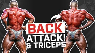 Back & Triceps | Lorenzo Leeuwe | Bodybuilding Series