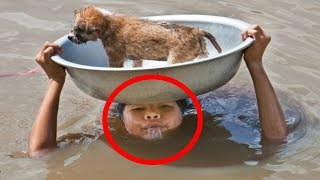 10 AMAZING Animal Rescues THAT WILL SHOCK YOU!