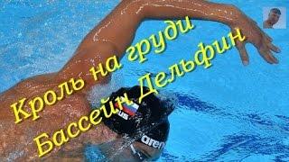 Плавание  Упражнения  Бассейн Дельфин  КАК НАУЧИТЬСЯ ПРАВИЛЬНО ПЛАВАТЬ  How to learn to swim