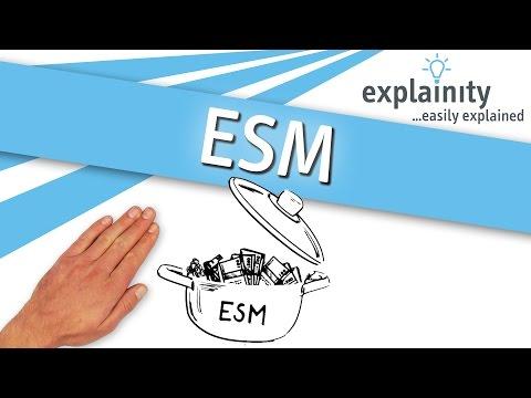 ESM einfach erklärt (explainity® Erklärvideo)