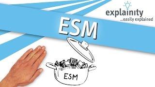 ESM einfach erklärt (explainity® Erklärvideo) thumbnail