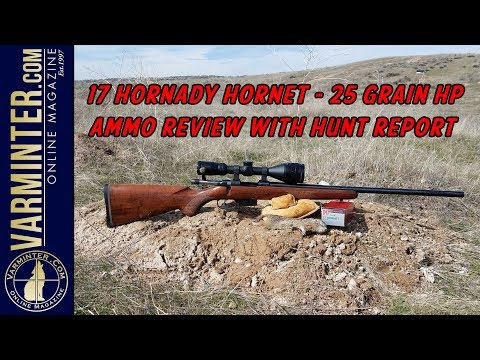 17 Hornady Hornet – 25 Grain HP Ammo Review With Hunt Report