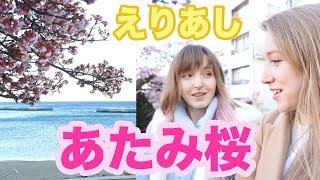 【えりあし】熱海の旅!桜見たくて来ちゃいました!あたみ桜満開🌸🌸🌸