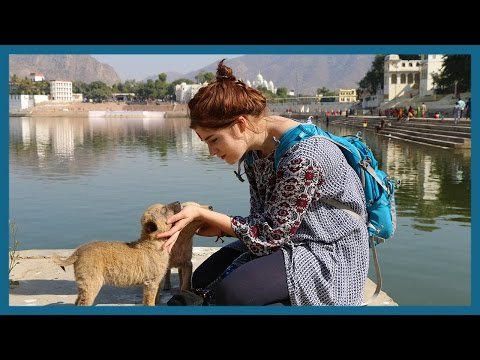 The Spiritual Lake of India Vlog | Pushkar | India Travel Vlog | Travowl Films
