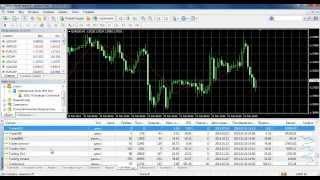 Торговые сигналы Форекс для MetaTrader / MetaTrader Signals Service