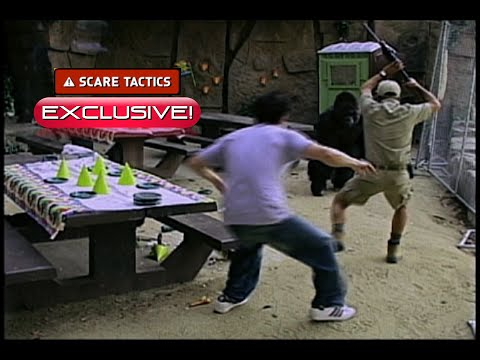 "Scare Tactics YT Exclusive!  ""Monkey Trouble"""