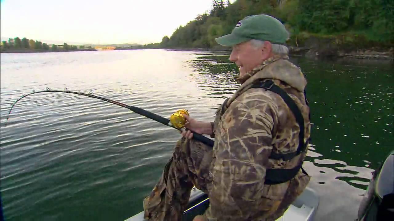 The White Sturgeon: Biggest Freshwater Fish in North ...