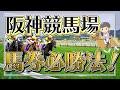 阪神競馬場を徹底分析!馬券が当たる法則とは?