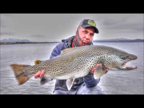Iceland -Brown Trout Paradise.