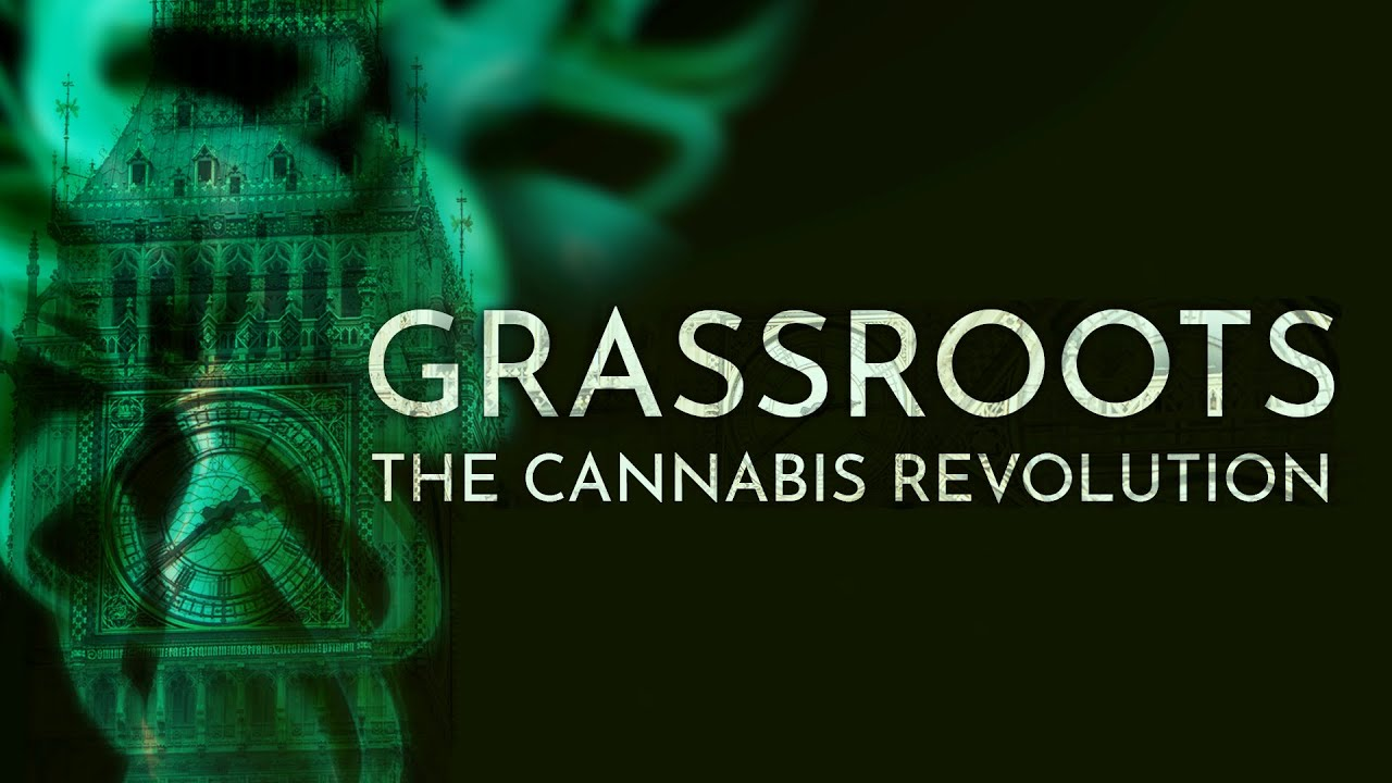 A Belated Green Revolution for Cannabis: Virtual Genetic ...