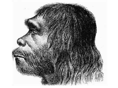 Neanderthal Genes Found in Modern Humans - YouTube