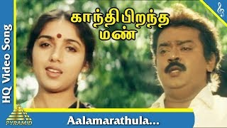 Aalamarathula  Song |Gandhi Pirantha Mann Tamil Movie Songs | Vijayakanth | Revathi | Pyramid Music
