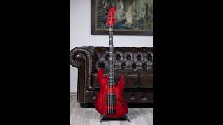 Maruszczyk Elwood Signature Bruno Tauzin  🎸 Test Complet