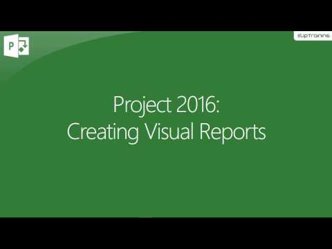 MS Project 2016 - Creating Visual Reports