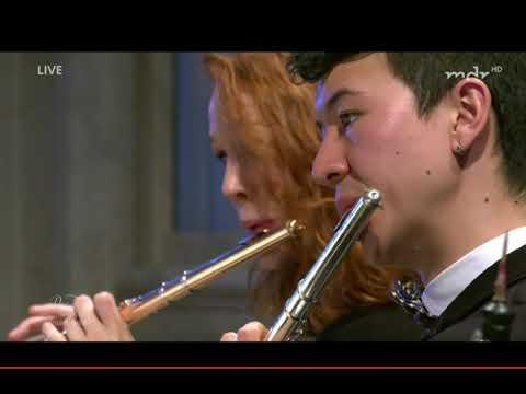 "Mendelssohn 4th Synphony · ""Saltarello"": Presto - European Union Youth Orchestra - Vasily Petrenko"