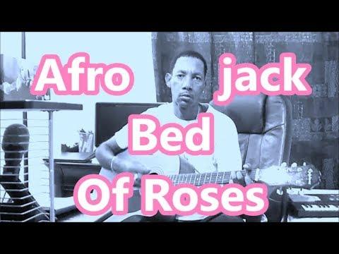 Afrojack Feat. Stanaj - Bed Of Roses ( GUITAR COVER )