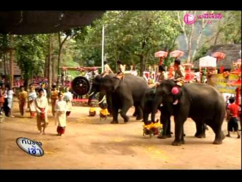 ข่าวงานช้างไทย ช่องเดลินิวส์