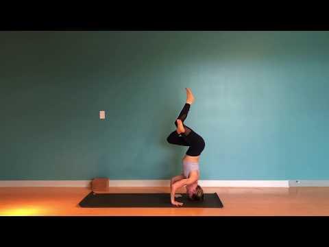 tutorial tuesdays — hot asana yoga studio