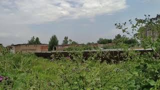 Лосино-Петровский город Московской области