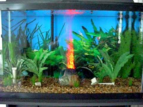Aquarium Volcano