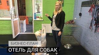 Бизнес-план: отель для собак