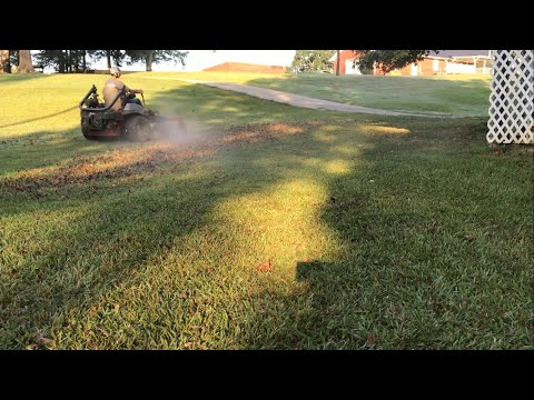 A day in the life of From the Ground Up's lawn care (2017)