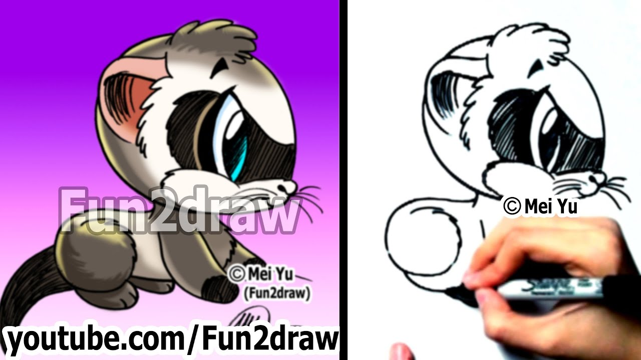 how to draw animals how to draw a ferret easy things to draw fun2draw youtube