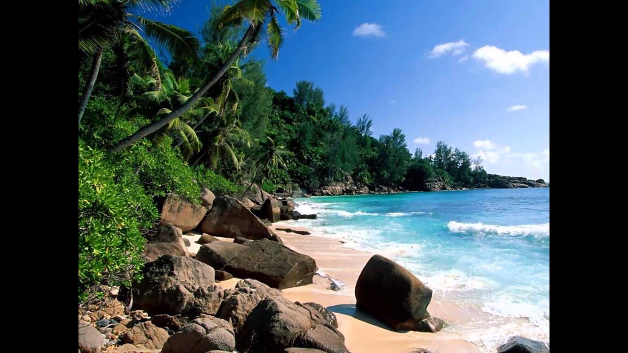 Las islas del caribe youtube - La isla dela cartuja ...
